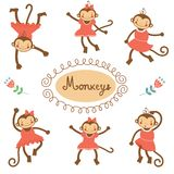 Cute funny monkeys Royalty Free Stock Photography