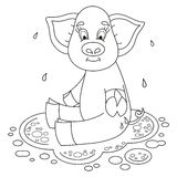 Cute funny piggy sits on water puddle, coloring Royalty Free Stock Photos