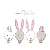 Cute funny rabbits Royalty Free Stock Images