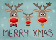 Cute funny reindeer family on blue vintage background with text merry christmas Stock Images