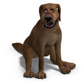 The cute and funny toon dog is a bit silly Royalty Free Stock Image