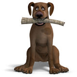The cute and funny toon dog is a bit silly. 3D Stock Photos