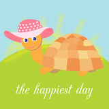 Cute funny turtle in beautiful hat on a green meadow Royalty Free Stock Photography