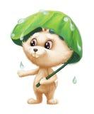 Cute Furry Bunny - Cartoon Animal Character Mascot in the Rain with Umbrella Royalty Free Stock Photos