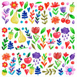 Cute garden flower and plants with fruits and berries For invitation, kindergarten, wedding invitations, nursery Stock Photography