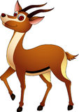 Cute gazelle cartoon Stock Photo