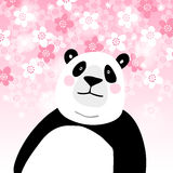 Cute giant panda bear with pink cherry blossoms background. Kids poster or birthday greeting card, vector illustration. Cute giant panda bear with pink cherry Stock Images
