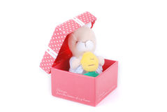 Cute gift in red gift box Stock Photo