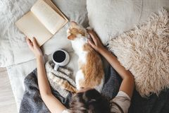 Hygge concept with cat, book and coffee in the bed. Cute ginger cat is sleeping in the bed on warm blanket. Cold autumn or winter weekend while reading a book stock photography