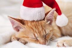 Cute ginger kitten wear santa hat asleep on soft white blanket stock image