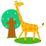 Cute giraff Royalty Free Stock Photography