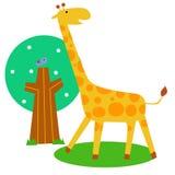 Cute giraff Royalty Free Stock Photography