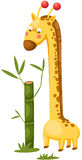 Cute giraffe with bamboo Royalty Free Stock Images