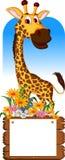 Cute giraffe cartoon with blank board Stock Photography