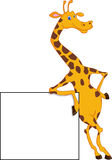 Cute giraffe cartoon with blank sign Stock Photography