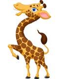 Cute giraffe cartoon Royalty Free Stock Image