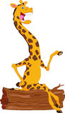 Cute giraffe cartoon Royalty Free Stock Photos