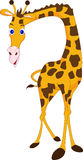 Cute giraffe cartoon Stock Photos