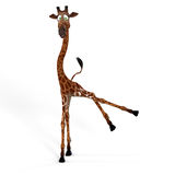 Cute giraffe with a funny face - lovely Royalty Free Stock Photography