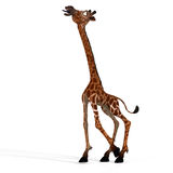 Cute giraffe with a funny face - lovely Royalty Free Stock Images