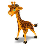 Cute Giraffe Illustration Royalty Free Stock Images