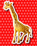 Cute giraffe on red background Royalty Free Stock Photos