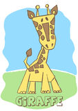 Cute Giraffe. Stock Photos