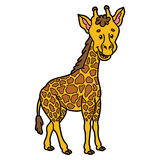 Cute giraffe. Vector illustration of cute cartoon giraffe character for children and scrap book vector illustration