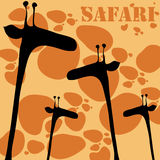 Cute giraffes Royalty Free Stock Photography