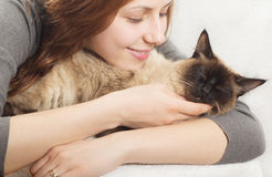 Cute girl,  kitten Royalty Free Stock Photography