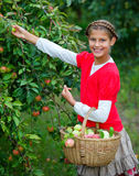 Cute girl in apple orchard Royalty Free Stock Photo