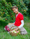Cute girl in apple orchard Stock Photography
