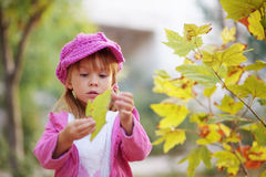 Cute girl in autumn park Stock Photos