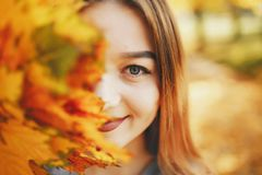Cute girl in a autumn park. Pretty cute girl with make up, dressed in black dress standing in a autumn park keeps the leaves near the face stock image