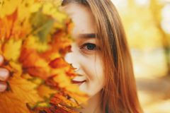 Cute girl in a autumn park. Pretty cute girl with make up, dressed in black dress standing in a autumn park keeps the leaves near the face royalty free stock photography
