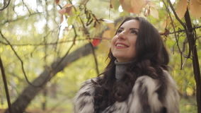 Cute girl in autumn park. Sunlight streams through autumn leaves. close-up. Beautiful girl in autumn park. Rays of light through the autumn leaves stock footage