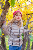 Cute girl in autumn sit on tree Royalty Free Stock Photography