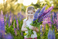 Cute girl in blooming lupine field Stock Images