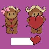 Cute girl and boy bull cartoon love heart Stock Images