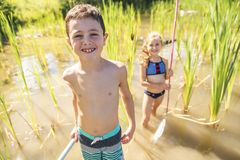 Cute girl and boy fishing with a net on a lake. A girl and boy fishing with a net on a lake royalty free stock images