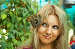 Cute girl with butterfly Royalty Free Stock Images