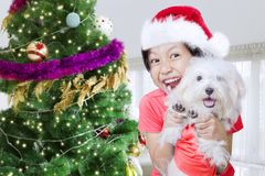 Cute girl celebrating Christmas with her dog. Cute little girl wearing Santa hat while celebrating Christmas with her Maltese dog. Shot at home Stock Images