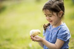 Cute girl with the chicken Royalty Free Stock Image