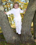 Cute girl climbing on tree Royalty Free Stock Photo