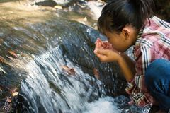 Cute girl drinking water from waterfall Stock Image