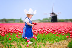 Cute girl in Dutch costume in tulips field with windmill. Adorable curly toddler girl wearing Dutch traditional national costume dress and hat playing in a field Stock Images