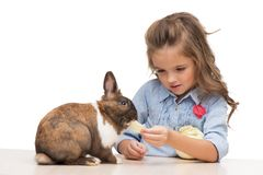 Cute girl feeding bunny with cabbage Royalty Free Stock Photos