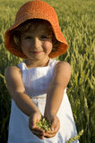 Cute girl on field Royalty Free Stock Image