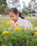 A cute girl on a field Stock Photo
