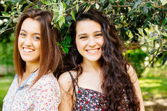 Cute girl friends under an olive tree Stock Photos